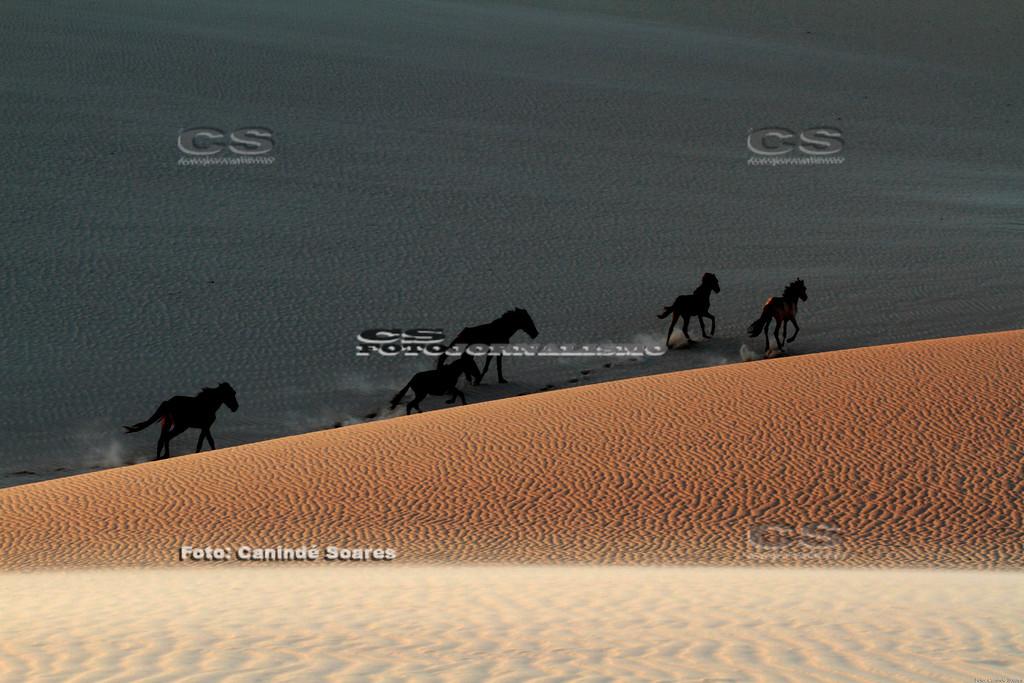 Cavalos nas Dunas de Redonda