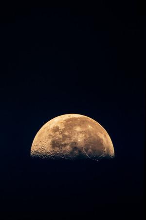 4.26.19 - Luna