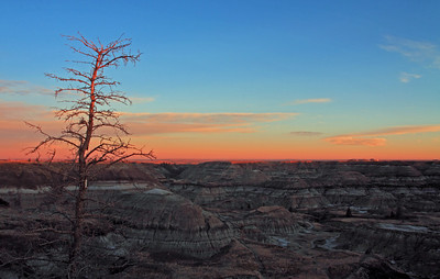 Horseshoe Canyon Autumn