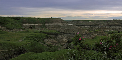Horseshoe Canyon Springtime