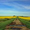 Torrington Alberta