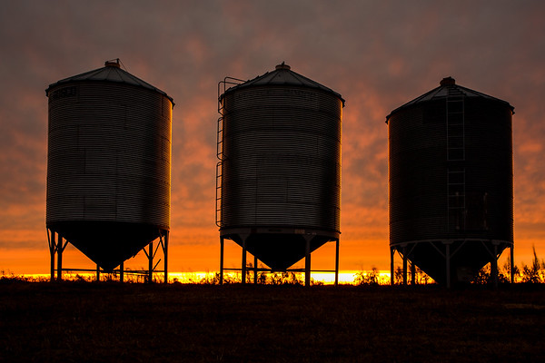 Steel Grain Bins