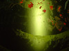 16 Prayer for understanding karma-green series
