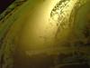 18  Prayer for light during the dark days-gold