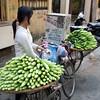 cucumber girl, Hanoi
