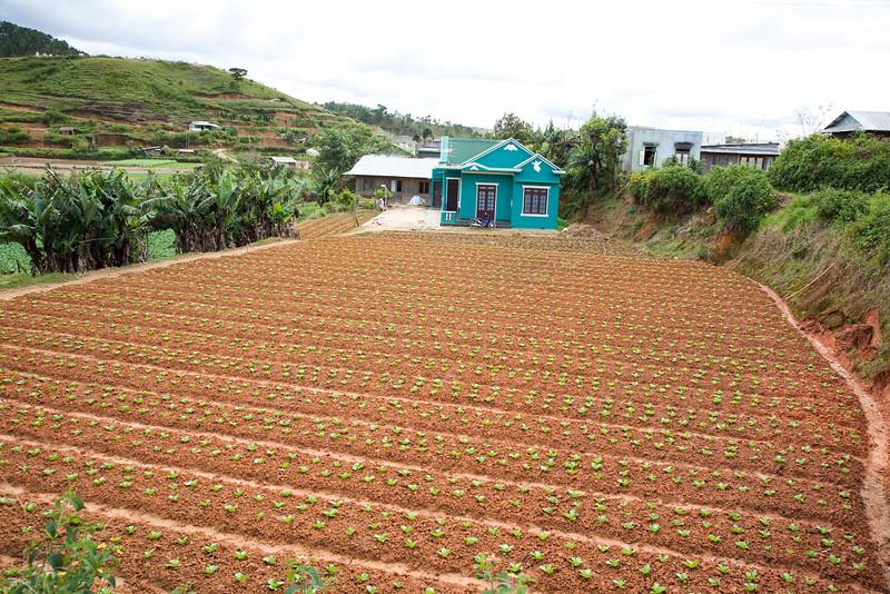 Viet Nam near Dalat