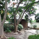 Guest House Yard