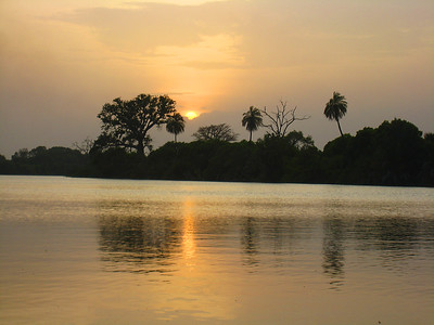 River Gambia, The Gambia, West Africa