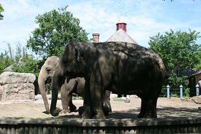 Audubon Zoo, New Orleans, Louisiana