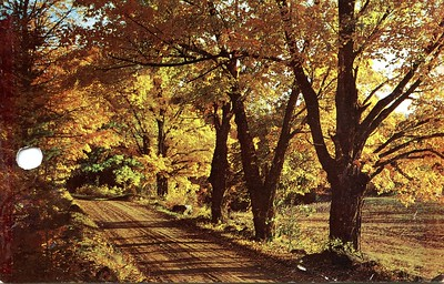 Hiking DeSoto Trail