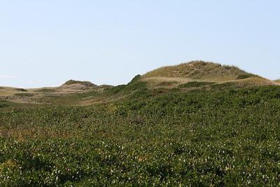 Sand Dunes Park