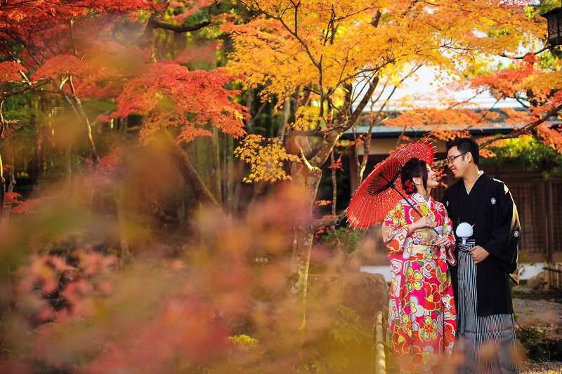 nara autumn pre wedding