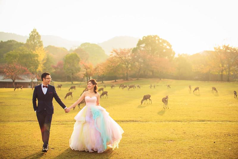 nara pre wedding