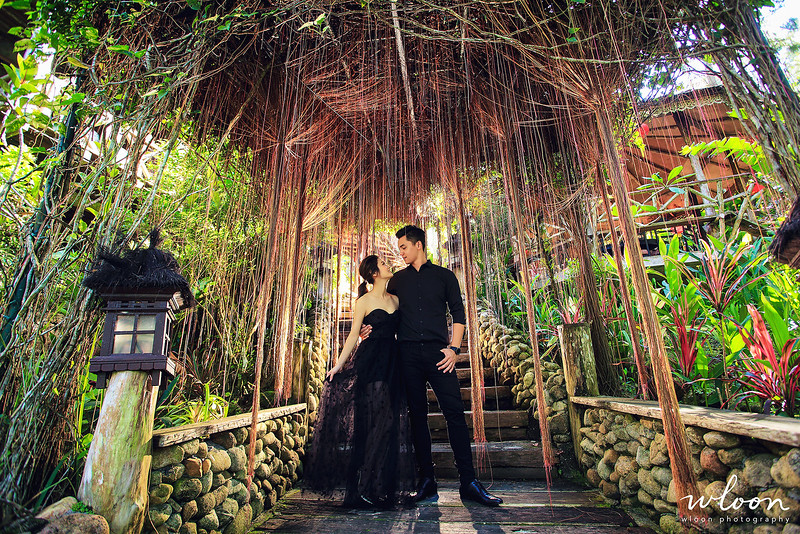 fig tree house pre wedding