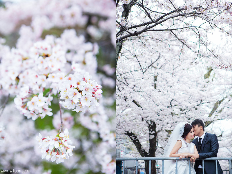 japan pre wedding
