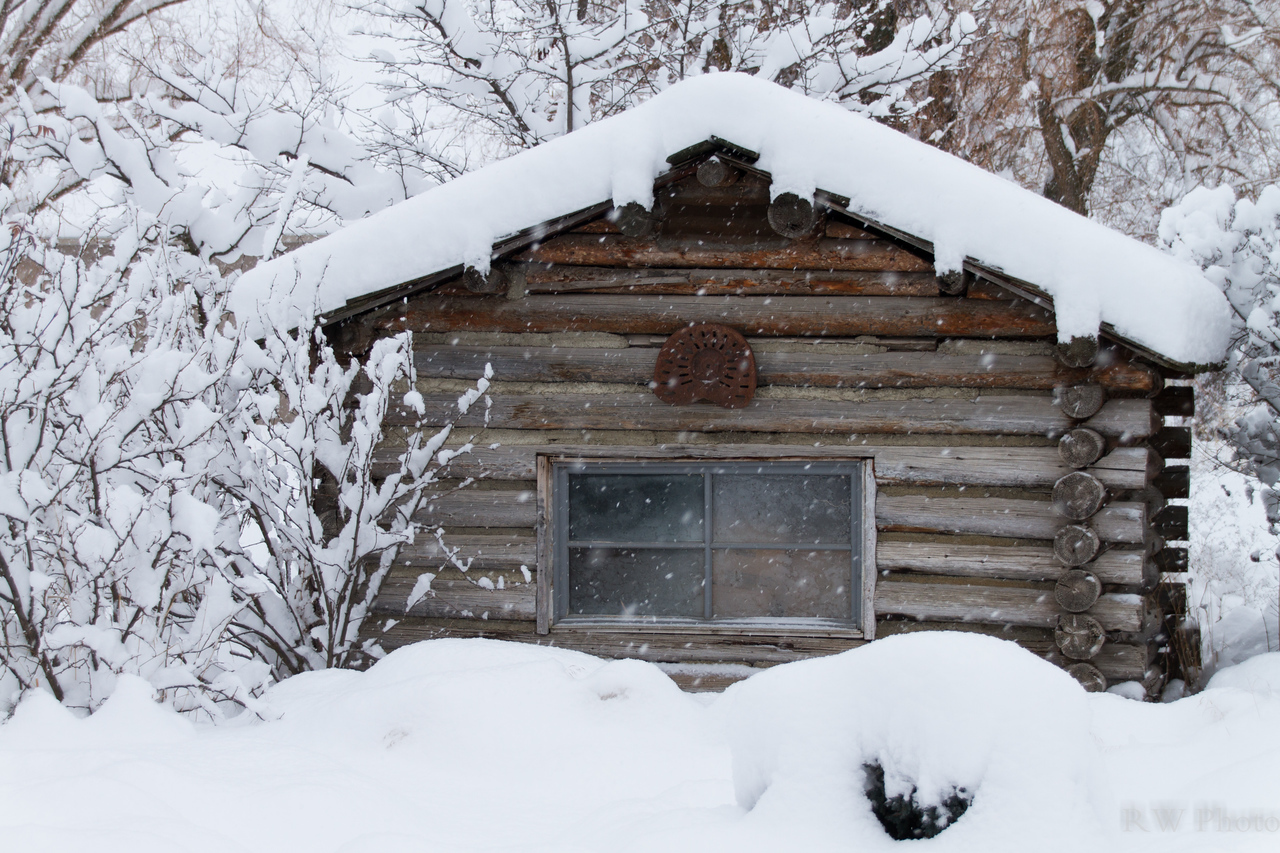 12 inches of new fluffy snow on the cabin and house