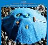 XLIX 0224,1 5