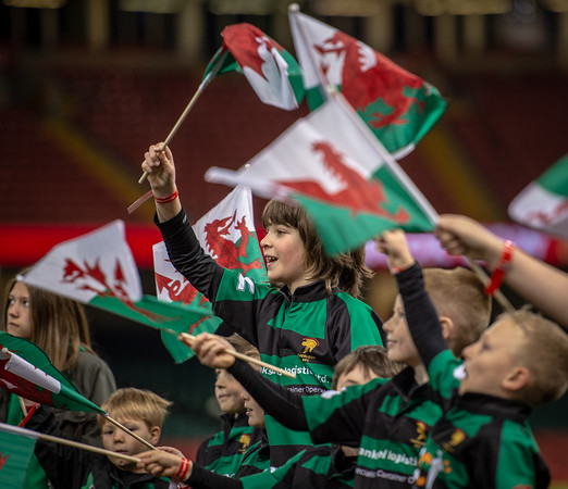 WRU National Cup Final, Newport v Merthyr at Principality Stadium in Cardiff, South Wales on Sunday 29 April 2018.   Pictures by Simon Latham