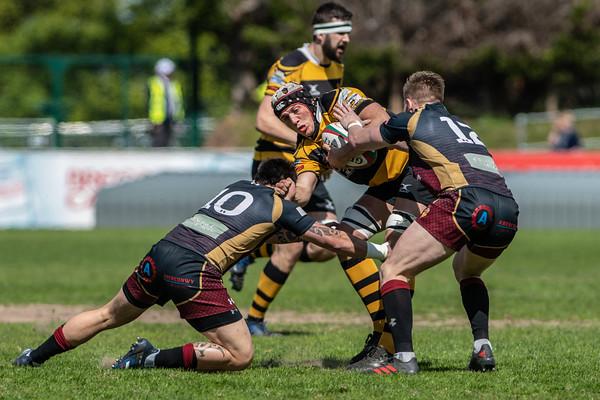 RGC v Newport at Parc Erias, Principality Premiership, Saturday 12 May 2018
