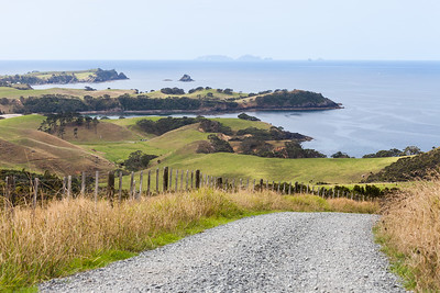 Gravel road and rural landscape, Kauri Mountain, Northland