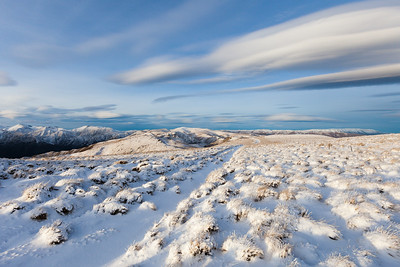 Fresh snow covering tussock and 4WD track, Breast Hill Track, Hawea Conservation Park