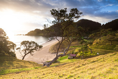 Early morning light at Sandy Bay, Whananaki Coastal Walk, Te Araroa Trail, Northland