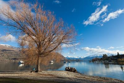 Winter morning on the shore of Lake Wanaka, Wanaka, Otago