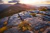 Limestone karst, Mount Arthur, Kahurangi National Park