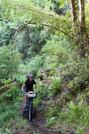Female bikepacker on the Waiuta Track, Victoria Forest Park