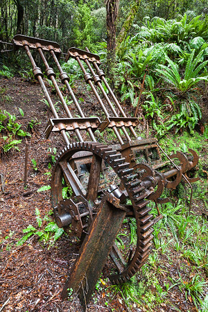 Mining relics, Longwood Forest Conservation Area