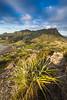 Manaia seen from Mount Aubrey