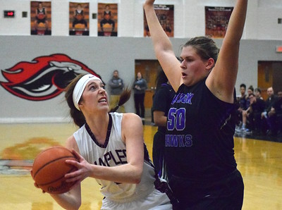 Bloomfield Hills did not let underdog Birmingham Seaholm get the emotional upper hand in their Class A district semifinal, winning 63-40 on Wednesday, March 1, 2017. (MIPrepZone photo by Matthew B. Mowery)