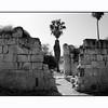 Al-Minya old ruin, East Galilee