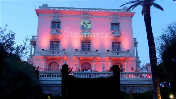 Steinmetz 2009