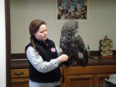 Erin checks off on Great Gray Owl