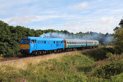 31289+1317 on the 2G09 Tonbridge Wells to Groombridge sidings at Pokehill farm crossing on the 5th August 2016