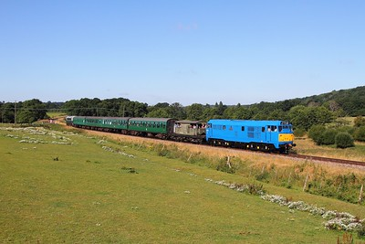 31289 tnt D5310 on the 2T58 0915 Eridge to Tunbridge Wells West at Pokehill farm crossing on the 6th August 2016