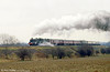 BR 4MT 4-6-0 75069 speeding through the countryside with the 'Shakespeare Limited' on 12 April 1986 .
