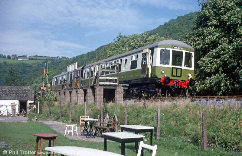 Gloucester RCW class 100 DTCL no. 56317 at Cwmdwyfran, Gwili Railway, during 1979.