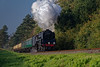 9F 92212 exits the pine trees with the 09:30 Alresford - Alton, during the Steam Gala <br /> on 23rd October 2016.