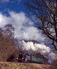 Ivatt 41312 passes Baigents Copse with the 11:16 Alton - Ropley, during the Steam Gala on 12th March 2005. Scanned Transparency.