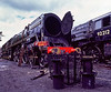 """71000 """"Duke of Gloucester"""" undergoing maintenance in Ropley Yard on 29th July 2005. Scanned Transparency."""
