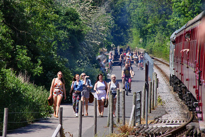 The Cycle Path running along side the Avon Valley Railway was rather busy  26/05/12