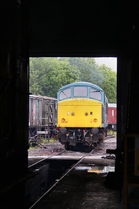 46010 on Ruddington Shed 15/05/11