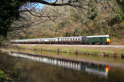 D8110 trundles along the River Dart passing Dartington on the: 15:00 Buckfastleigh to Totnes Littlehempston  30/03/13