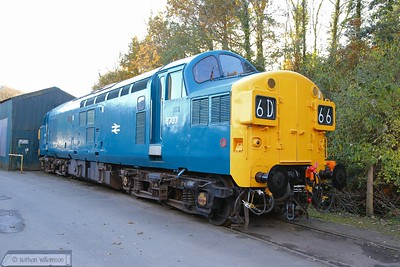 D6737