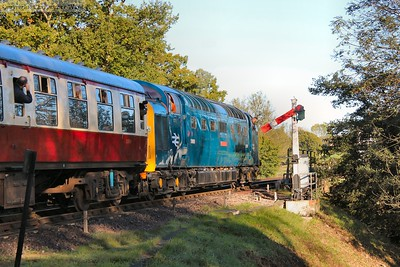 The blue Deltic in the autumn sunshine