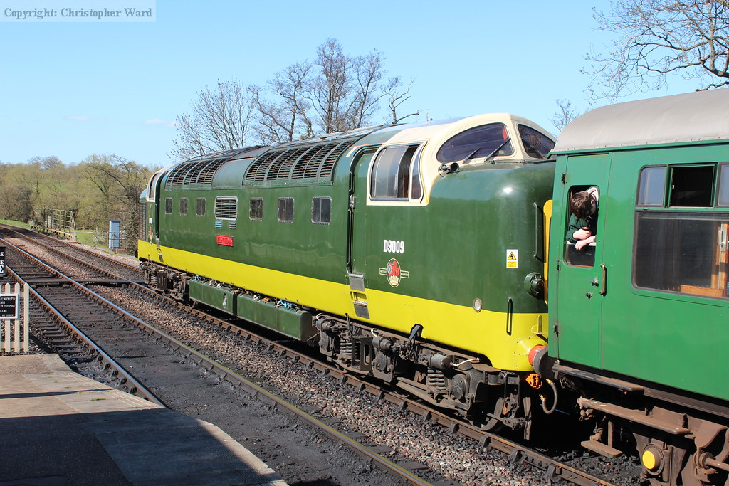 D9009 in the Sussex sunshine