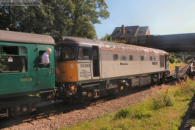 33063 glints in the sunshine