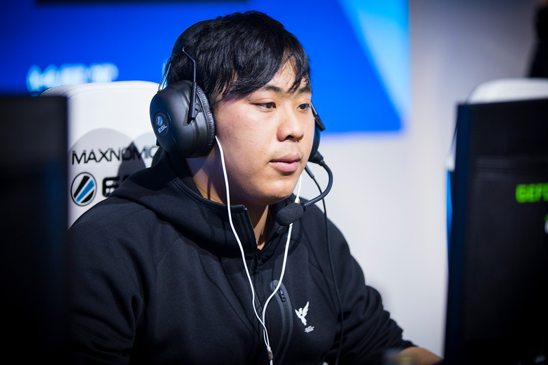Wings IceIce playing